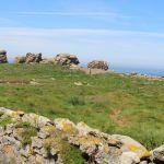 L\île aux merveilles: la grande histoire des plantes Plouguerneau