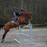Championnats Départemental amateur de saut d\obstacles Landéhen