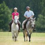 Stage d\équitation à l\Etirer Vitréen Vitré