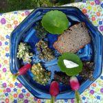 Préparer un apéro avec les plantes sauvages LA VRAIE CROIX