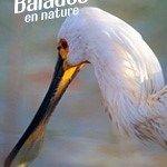 Prise de becs à la Provostière Journée mondiale des zones humides Riaillé