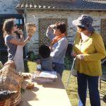 Atelier-famille à la découverte de la vannerie sauvage Carquefou