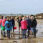 Sorties algues et ateliers de cuisine aux algues Pleumeur-Bodou