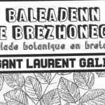 Balade botanique en breton Rostrenen