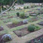 Vente de plants potagers Planguenoual
