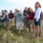 Sortie nature LPO Observons les oiseaux Pleumeur-Bodou
