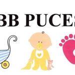 Vide grenier bébé puces Pleumeur-Bodou