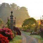 Soirée \Voir l\invisible\ au Parc Botanique de Haute Bretagne Le Châtellier