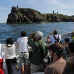Excursion en bateau du Cap d'Erquy au Cap Fréhel Erquy