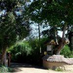 Visite libre de la bambouseraie des 7 sources Plouaret