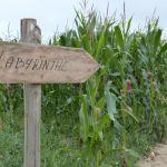 Le monde agricole : Découverte de la ferme de Malido Saint-Alban